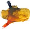 Wax Medium blended with Williamsburg's Slate Black and Alizarin Orange Oil Colors.